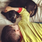 Aiden and his new puppy Annabelle wore each other out. #SleepySunday