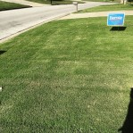 Will the populist Bernie Sanders' message resonate with the voters of precinct 144? If not, is that far enough away from the street to be left alone? Lol #feelthebern
