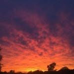 Sunset tonight. So lovely. #nofilter